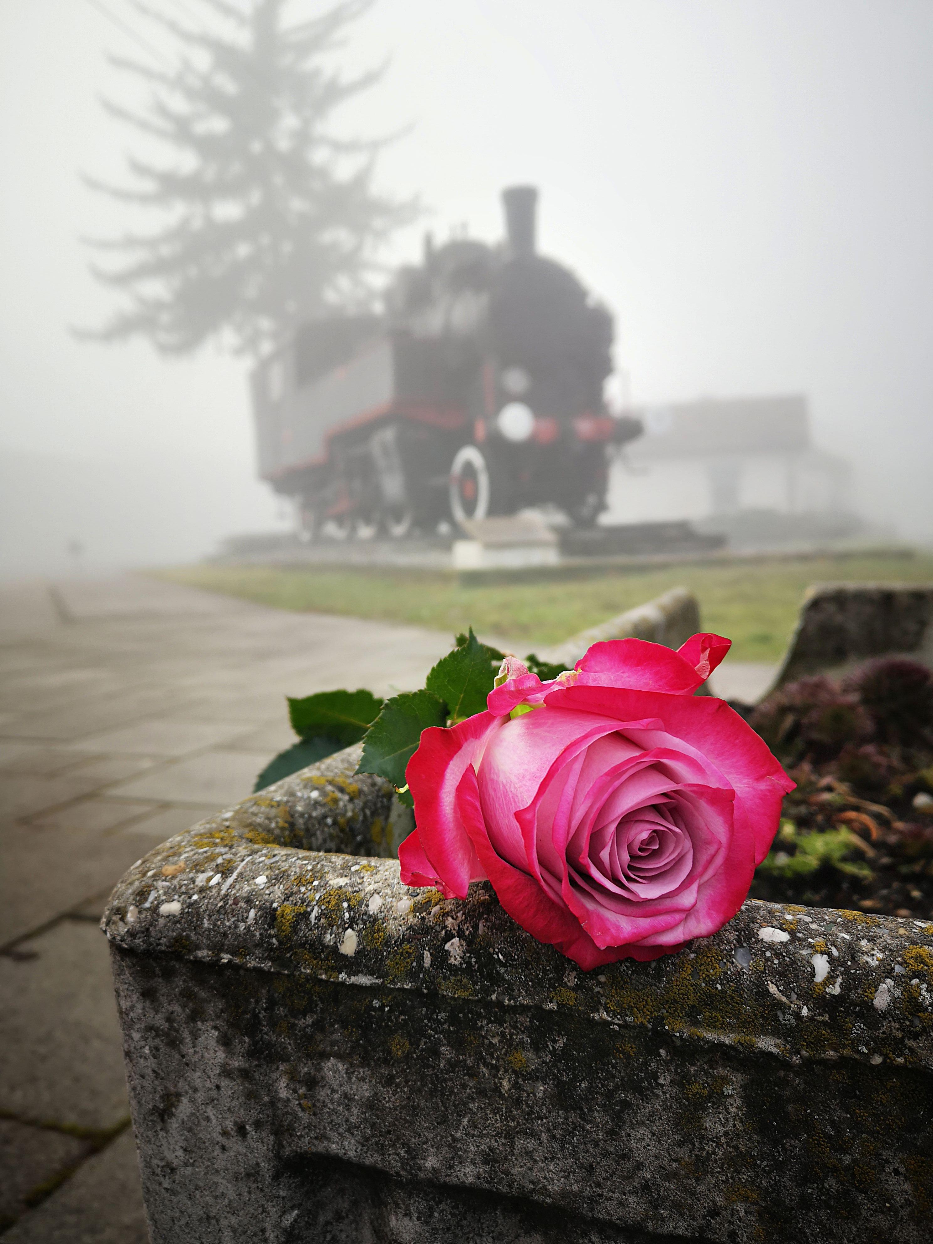 1 ruYa i lokomotiva